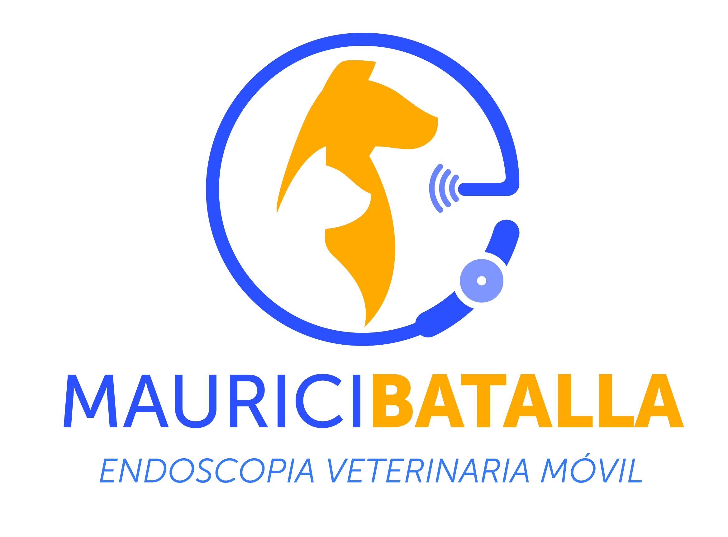 Cirugía endoscopia veterinaria móvil